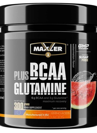 BCAA Plus Glutamine (300 гр)