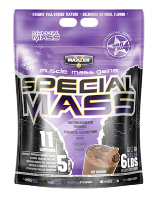 SPECIAL MASS GAINER (2700 гр)